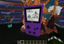 Minecraft Pokemon rot