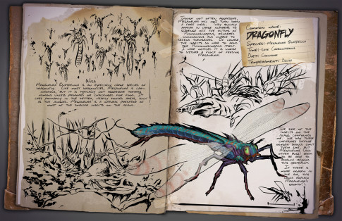 Dossier: Dragonfly   Meganeura