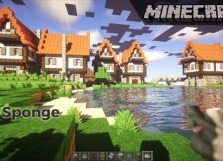 Minecraft Sponge
