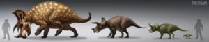 saurian_triceratops_lifecycle_by_arvalis-d9qvwo7 (1)