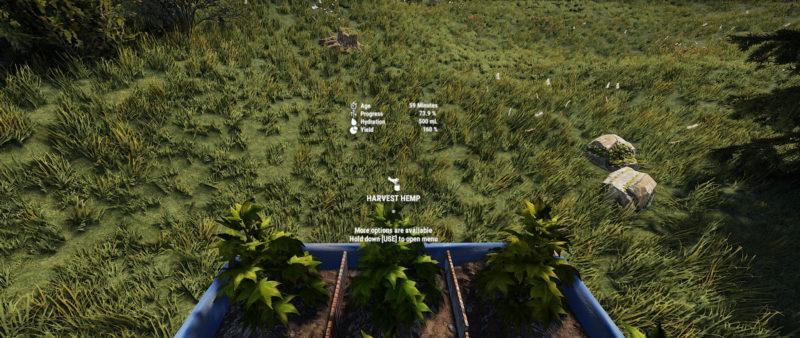 Rust Pflanzen-Informationen