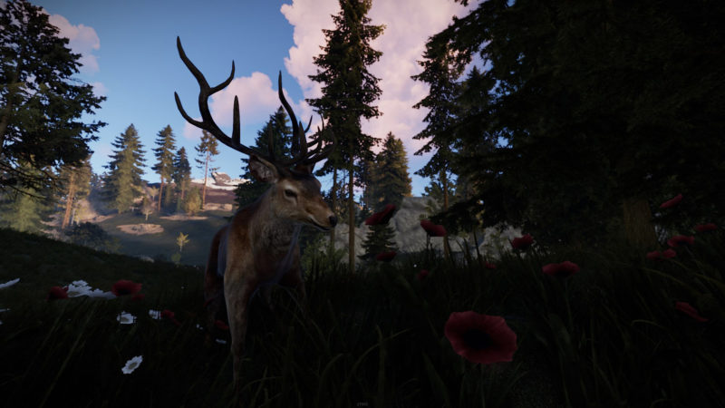 Rust Bandit-Town-Update
