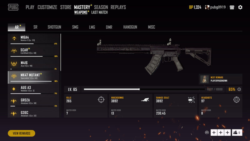 PUBG Weapon Mastery Feature