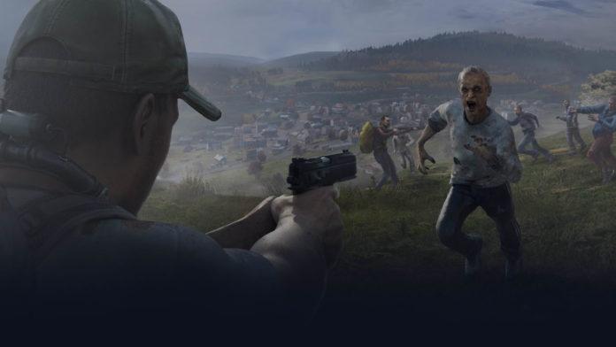 DayZ Survivor GameZ