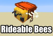 Minecraft Bienen reiten