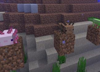 Minecraft Cave & Cliffs Update Vorschau
