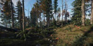 Rust - Welt-Überarbeitung